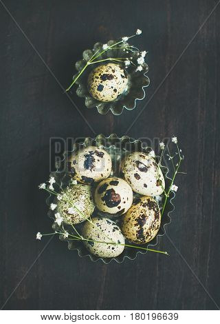Quail eggs in metal molds and dried wild flowers for Easter holiday over dark scorched wooden background, top view