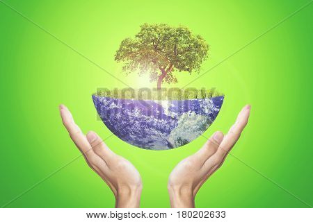 Earth Day concept. Human hands holding Earth with a tree. Shot with green screen background