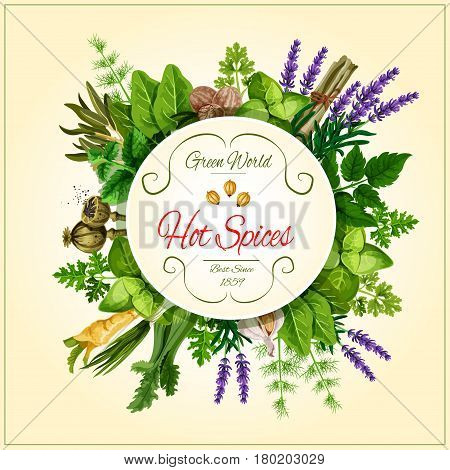 Spices and herbs poster. Rosemary, thyme and basil, mint and parsley, dill, garlic andonion, fennel and nutmeg, celery, lavender and poppy seed, sorrel, lemongrass round badge