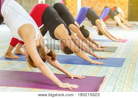 Group of young woman practicing during their yoga class in a gym