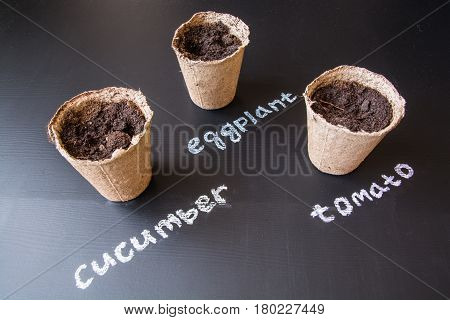 Peat pots for seedlings.Three seedlings cups with soil.