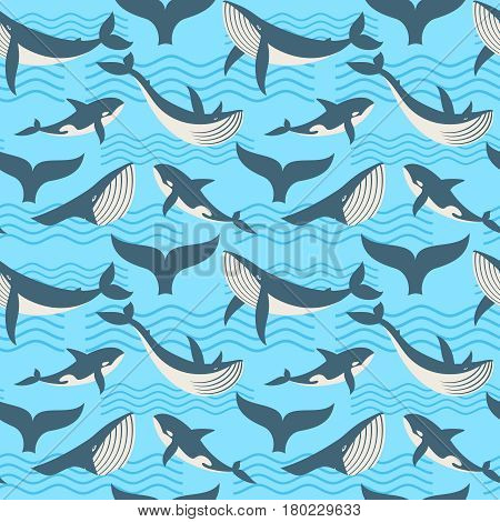 Vector seamless pattern with whale in ocean waves. Seamless background with wild whale, illustration of giant killer whale