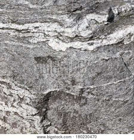 Natural surface of a fine-grained boulder of gneiss close-up shot - selected focus narrow depth of field