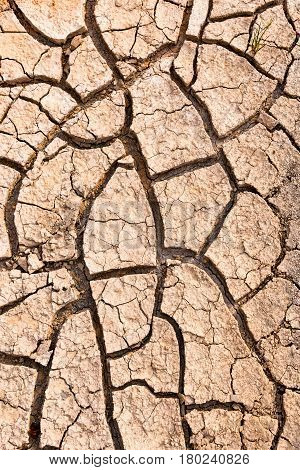 Nature background of cracked ground caused by drought. Impact of global warming or climate change concept.