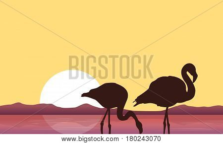 At sunset flamingo scenery silhouettes vector illustration