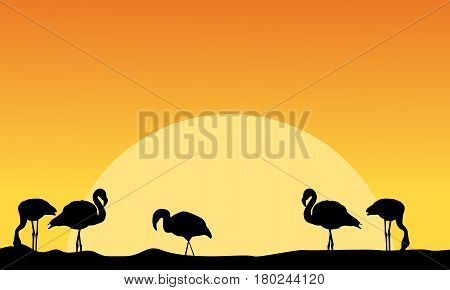 At sunset flamingo on riverbank scenery vector illustration