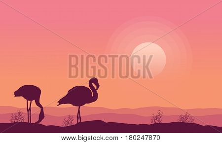 Silhouette flamingo scenery collection stock vector art