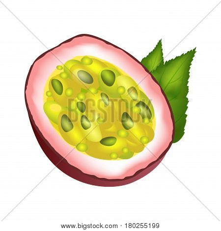 Juicy passion fruit cut part with green leaves isolated on white. Vector illustration of colorful tropical fruit element in flat design. Passion fruit half with yellow-green center and violet skin