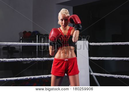 Beautiful young female boxer wearing boxing gloves posing confidently on a ring copyspace defense sportswoman athlete strength muscles tough powerful training active athletics concept