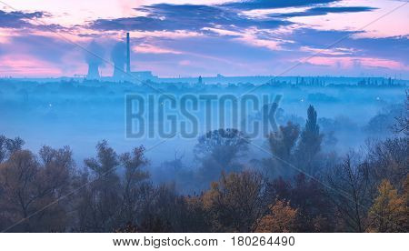 Early Morning In A Valley Covered With Blue Fog