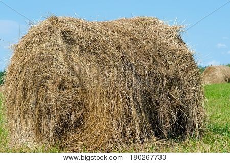 haystack on the field outdoors close up