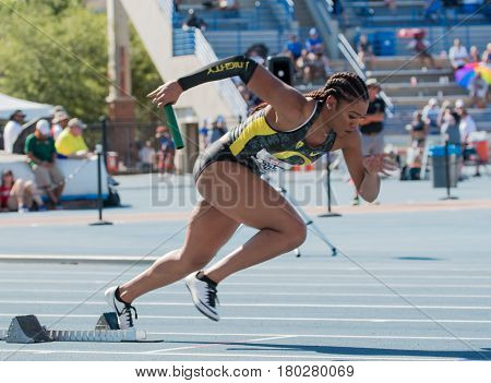 April 1, 2017 Makenzie Dunmore  of the University of Oregon Ducks competes at the Pepsi Florida Relays held at the James G. Pressly Stadium in Gainesville Florida.