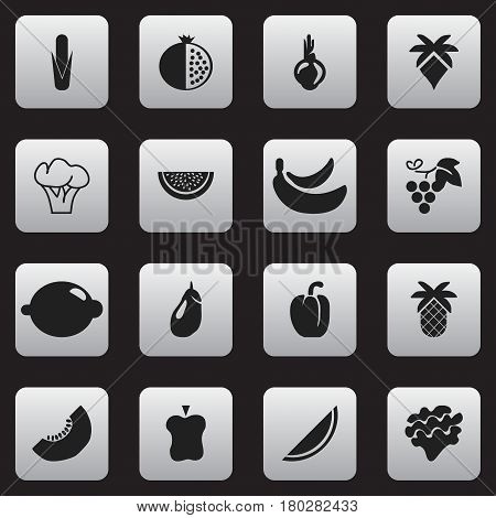 Set Of 16 Editable Dessert Icons. Includes Symbols Such As Garnet, Melon, Maize And More. Can Be Used For Web, Mobile, UI And Infographic Design.