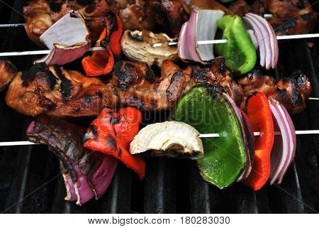 Vegetable and Chicken Kabobs on a Grill