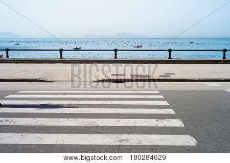 Shot of a shadow walking on zebra crossing