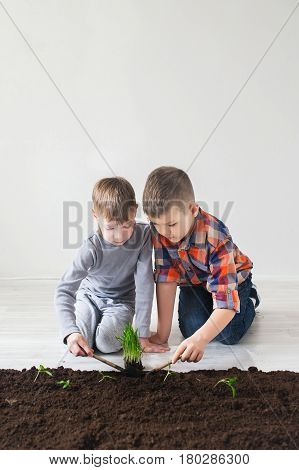 Two boys are thrown plants for Earth Day.