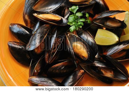 Fresh Plate of Mussels Garnished with Parsley & Lime