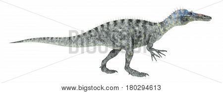 Computer generated 3D illustration with the dinosaur Suchomimus isolated on white background