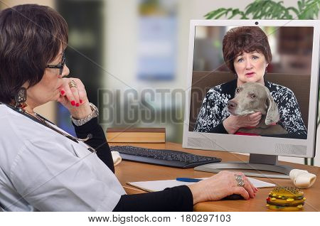 Telemedicine veterinarian provides a diagnosis and advice for weimaraner dog on computer monitor. Sitting at the desk virtual vet looks at pet with owner attentively. Horizontal mid-shot on blurred interior background