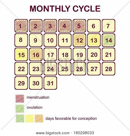 The monthly cycle of a woman. Menstruation and ovulation. Planning pregnancy and family. Calendar days favorable for conception.