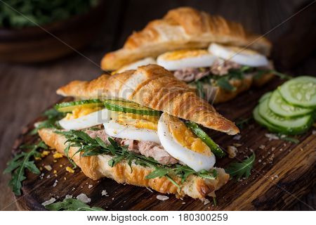 Tuna salad sandwiches with fresh cucumber, hard boiled egg and arugula. Healthy breakfast food. Closeup view, selective focus