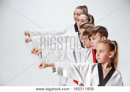 The studio shot of group of kids training karate martial arts and posing on gray background