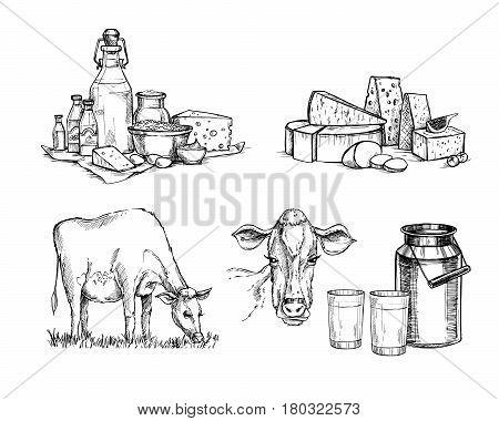 Hand Drawn Vector Illustrations. Milk Farm. Cheese And Milk Set (mozzarella, Blue Cheese, Gouda, Par