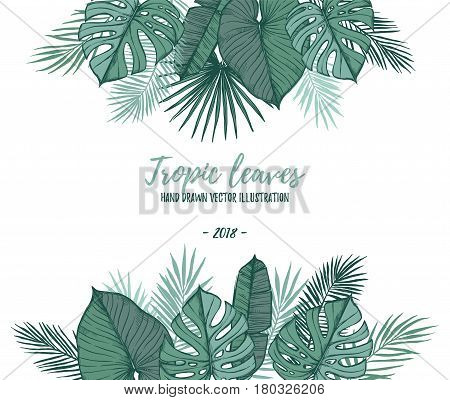 Hand Drawn Vector Illustration - Frame With Palm Leaves (monstera, Areca Palm, Fan Palm, Banana Leav