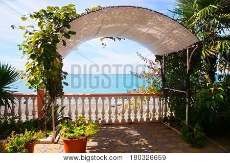 Beautiful terrace intertwined with plants on the seashore