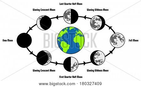 Moon Life Cycle Diagram including earth position and all phases during circulation full new waning waxing crescent gibbous first last quarter half for astronomy science education
