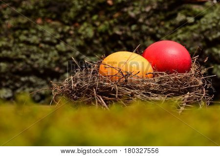 Colorful Eggs Inside Small Nest. Happy Easter Concept