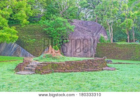 Termitary Among The Ruins