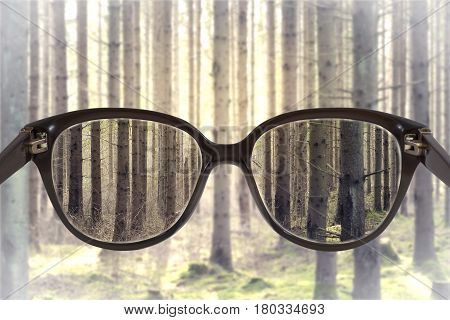 Clear cityscape focused in glasses lenses with blurred forest background.