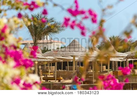 Luxury hotel resort place with wicker umbrellas parasols or sunshades tropical green palm trees and pink blossoming flowers on bright sunny day on blue sky background. Idyllic summer vacation