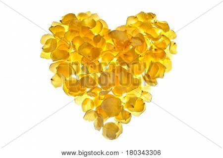 Heart of yellow roses petals arranged on a white background. Dried yellow rose petals.