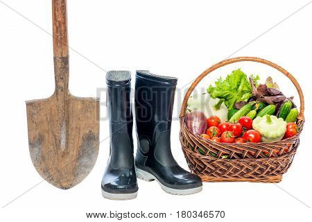 Shovel rubber boots and basket with a crop of vegetables on a white background