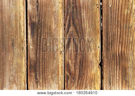 A fragment of a fence made of unpainted weathered wooden boards