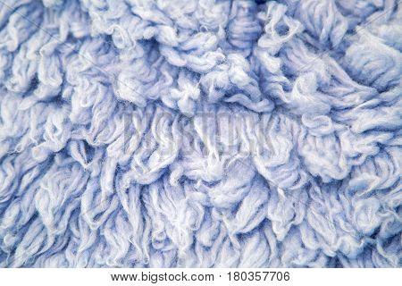 blue large long fur from the animal llama