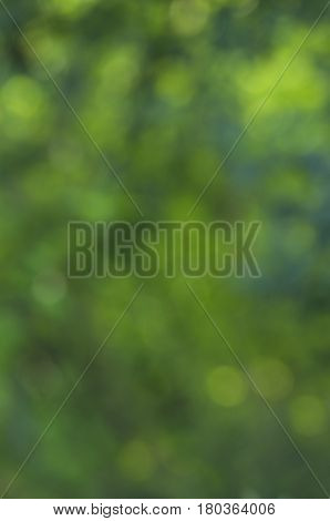 Green Background of various shades of emerald green orbs