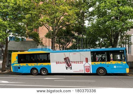 Auckland New Zealand - March 1 2017: Blue-yellow public bus serves North Star line and features giant advertisement for Smirnoff Vodka with the tag line Brain Freeze. Green vegetation.