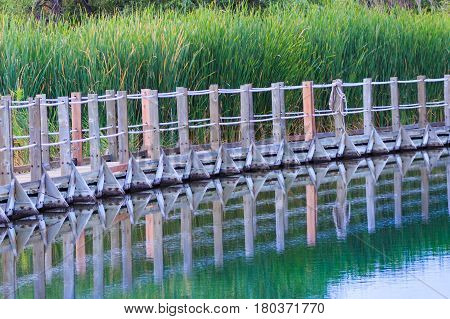 A floating boardwalk reflected in calm waters with cattails in the background.