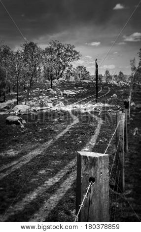 The aftermath of a fire in Teelah, in Queensland Australia, leaves a ravaged landscape with burnt, blackened grass, burning trees and smoke.