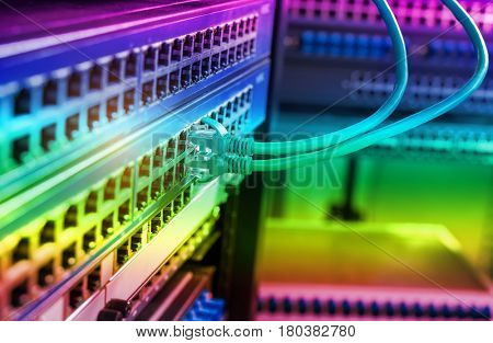 network cables connected to switch or router. Internet network communication concept