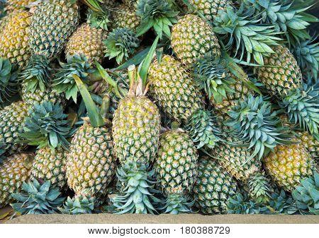 Fresh pineapples background