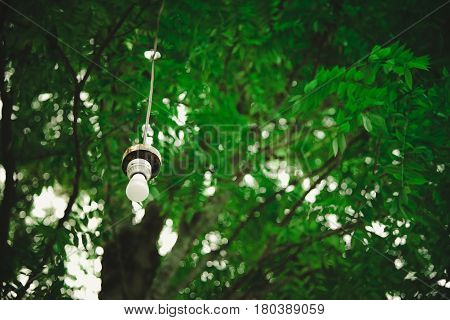 Lamp Hanging Under The Tree In The Garden. Vintage Tone.