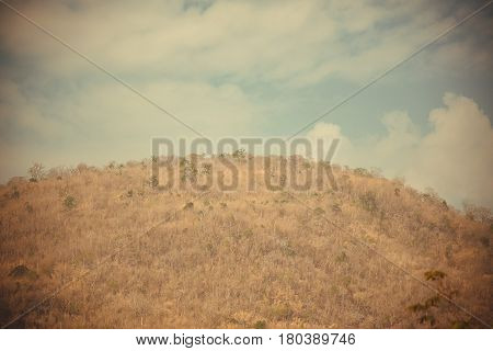 Mountain with tree and sky in vintage tone with vignetting