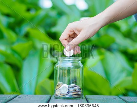 abstract money saving women hand put coin to glass jar Coins on wood table with green tree background