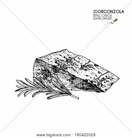 Vector hand drawn set of food. Isolated gorgonzola cheeze and rosemary branch.Engraved art. Delicious appetizer objects. Use for restaurant menu market store party decoration