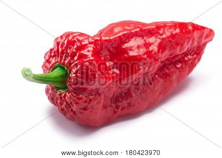 Bhut Jolokia Ghost Pepper, Paths