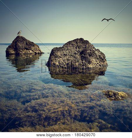 Crimea Seascape 1